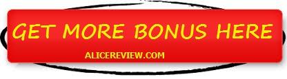 instaNiche bonus