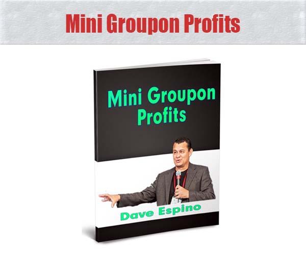Mini Groupon Profits