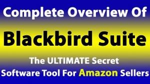 BlackBird-Review