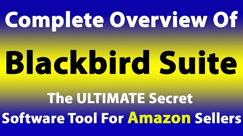 BlackBird Review & Bonuses
