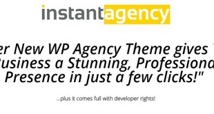 Instant Agency Theme Review